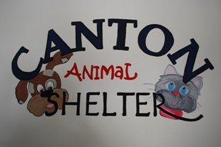 Animal Shelter | City of Canton, TX